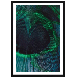 EMERALD FEATHER 1